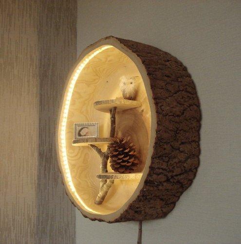holztisch aus einem ausgeh hltem baumstamm gefertigt als couchtisch oder beistelltisch in. Black Bedroom Furniture Sets. Home Design Ideas